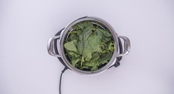 "Pour the water (approx. 150 ml) into the pot and add the spinach. Cover the pot with the lid and place it on Navigenio. Set Navigenio to ""A"". Switch on Audiotherm, enter approx. 5 minutes cooking time, fit it on Visiotherm and turn until the steam symbol appears."