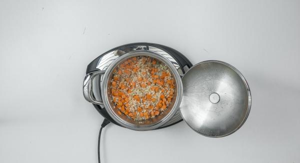 "Add carrots, fill up with vegetable broth and stir well. Put on Secuquick softline and close. Switch Navigenio to ""A"", select time setting ""P"" (= 20 seconds) on the Audiotherm, place on Visiotherm and turn until the soft symbol appears."